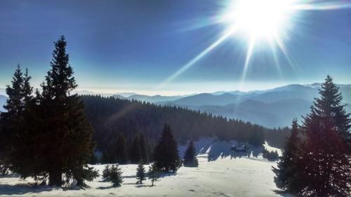 pamporovo-snow6